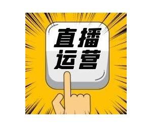 2020杭州国际网红带货直播产品博览会